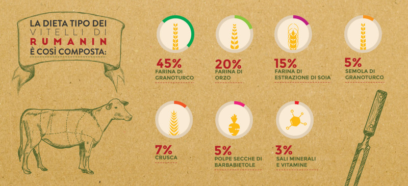 infografica-rumanin-ciampalinicarni